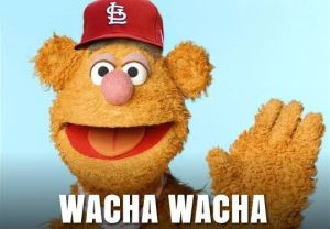 Wacha Wacha Don't Watcha.